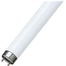 Лампа люминесцентная 18Вт G13/T8, 765, холодный свет, OSRAM