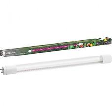 Лампа LED ФИТО TDM G13/T8 трубка,  9W, 600мм [SQ0340-0238]